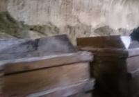 музей пешеланского завода