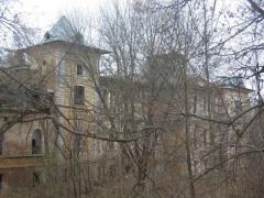 Высокое, усадьба Шереметьевых, руины главного дома